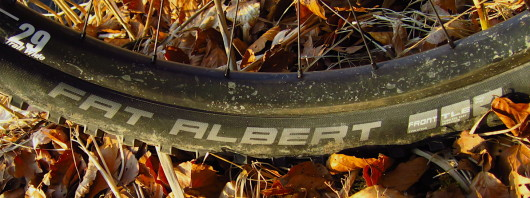 20 SCHWALBE Fat Albert