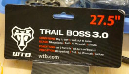 WTB Bridger und Trail Boss TCS Light Fast Rolling 27,5×3.0 – Testintro